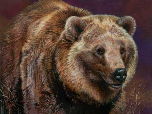 0055-Grizzly-Bear.jpg