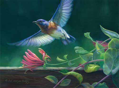0056-bluebird.jpg