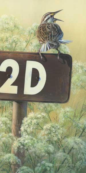 0076-meadowlark.jpg