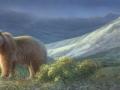 0082-grizzly-bear.jpg