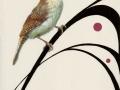 0103-Singing-Wren.jpg