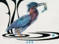 0105-Green Heron.jpg