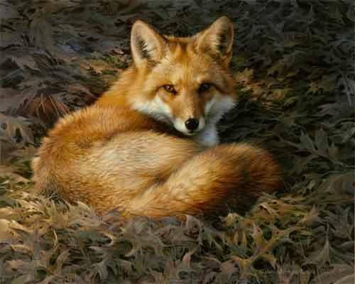 Prints Joni Johnson Godsy Wildlife Art Oil Paintings And