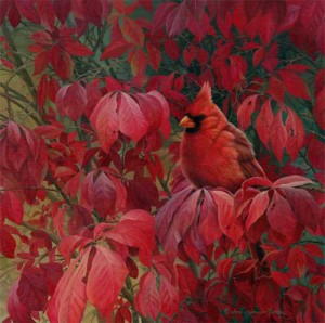 Cardinal wildlife art print