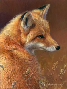 Red fox wildlife art print